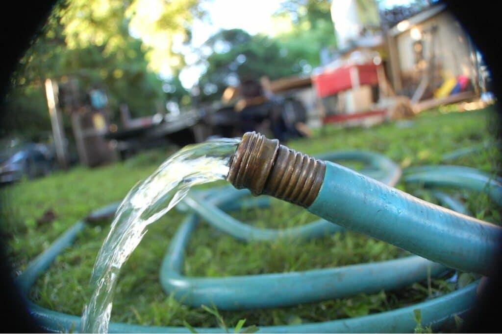 Wasserschlauch im Garten
