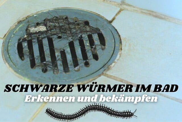Schwarze Würmer in der Dusche