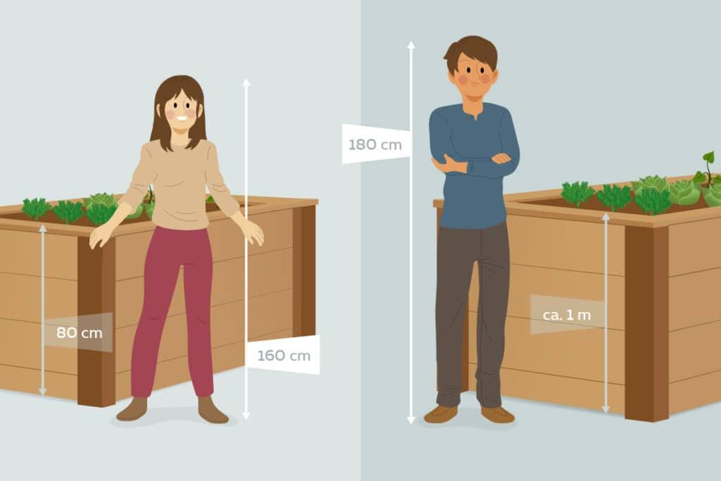 Körpergröße bestimmt Höhe des Hochbeets