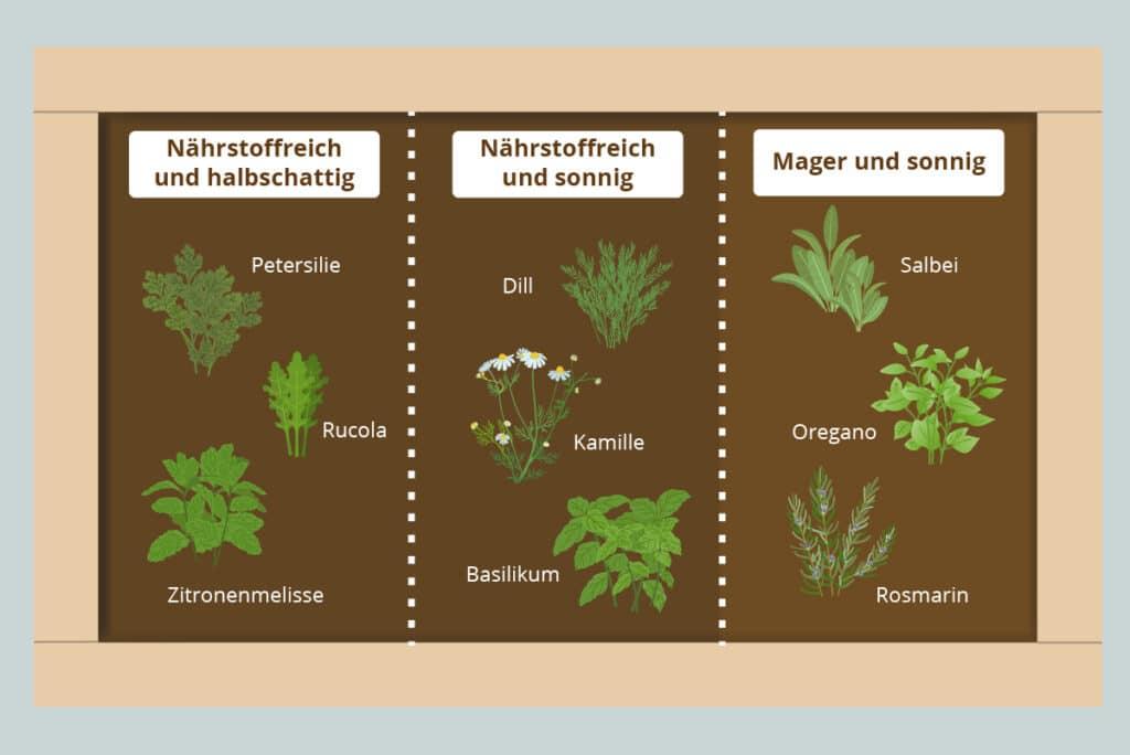 Zonen in Kräuterhochbeet